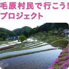 kodomo_machi_kehara