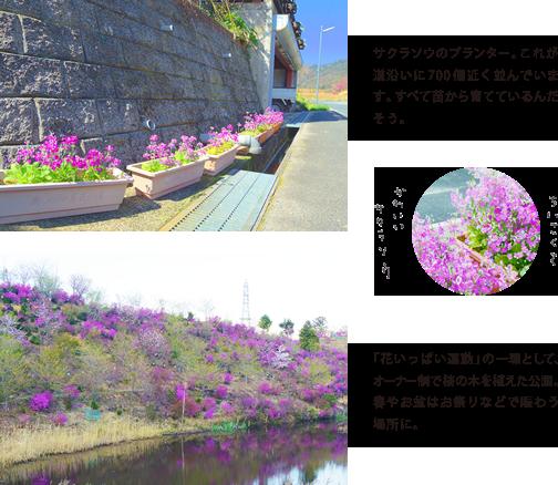 okuoono_03