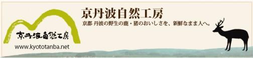 kt_banner